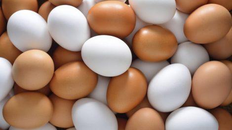 Como saber se o ovo está bom