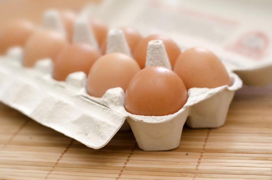 Salmonella em ovos