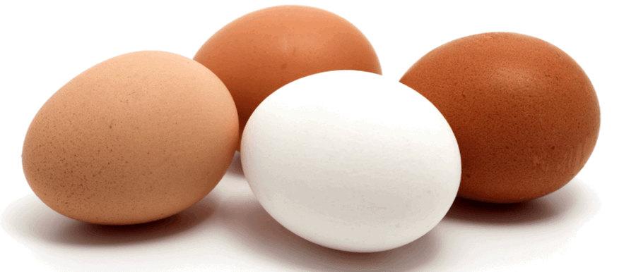 Vitamina de ovo